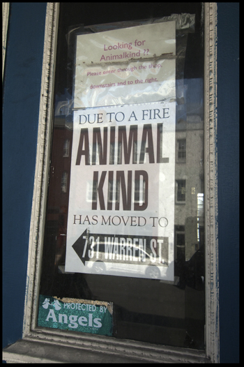 AnimalKind Fire Sign Olson.jpg