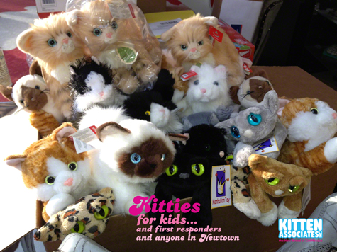 Box of Plush 12.24 R.Olson.jpg