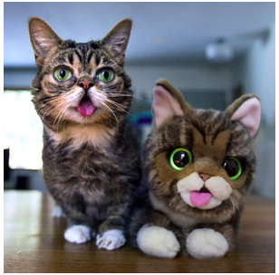 Bub with her Plush .jpg