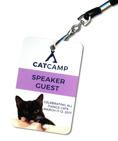 Cat Camp Badge 1000