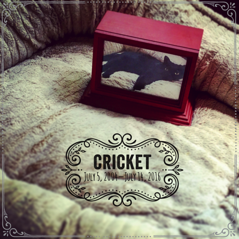 Crickets Urn Insta Version R Olson