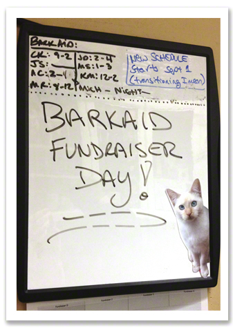 Fundraiser Day Sign R Olson.jpg