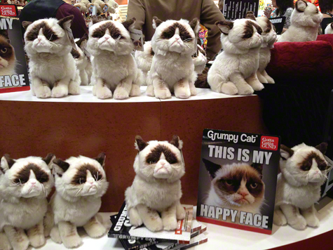 Grumpy Gund Display.jpg