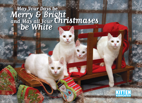 KA_2011_Holiday_Card_475.jpg