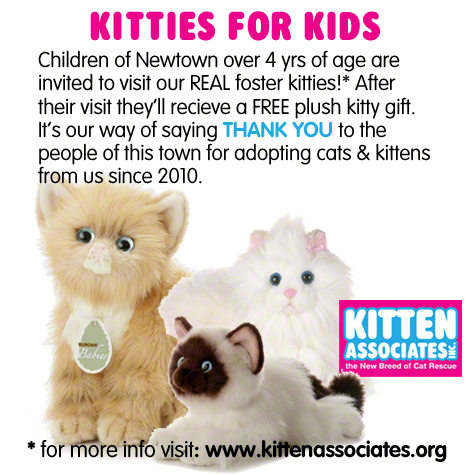 Kittens for the Kids copy.jpg
