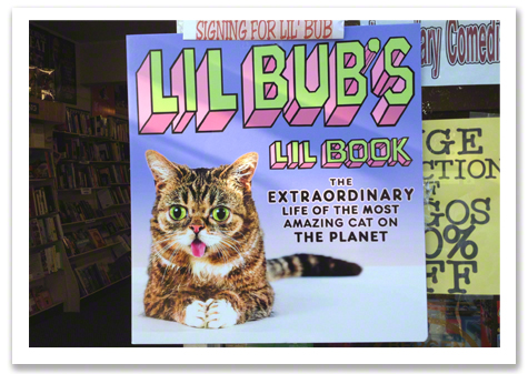 Lil Bub Sign R Olson.jpg