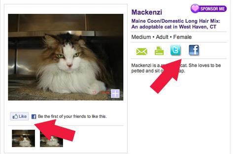 Mackenzi.jpg