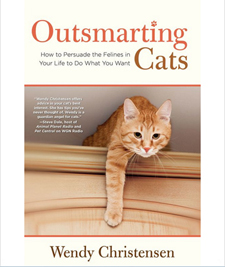 Outsmarting Cats Cover 225.jpg