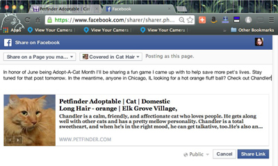 Petfinder Chandler FB post.jpg