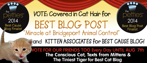 Pettie Banner Nominate for BLogPosts B copy.png