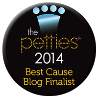 Petties_2014_Cause Blog Finalist Badge 200.png