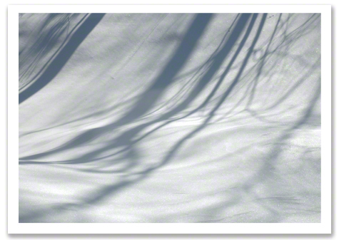 Snow Shadows 2011 R.Olson B1.jpg