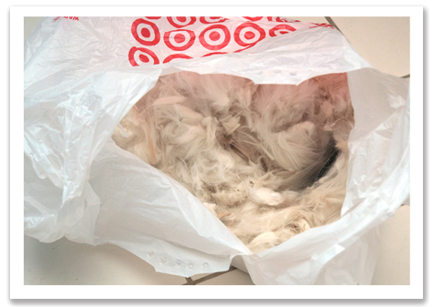 Target Bag of Fur R olson.jpg