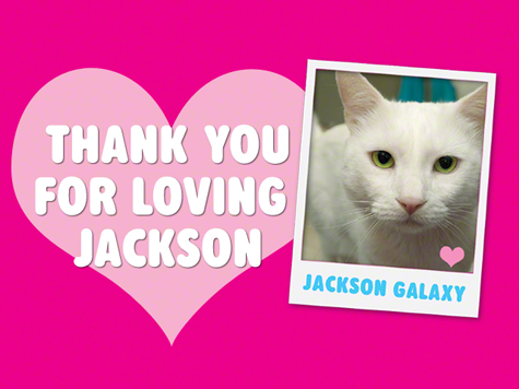 Thank You Love of Jackson.jpg