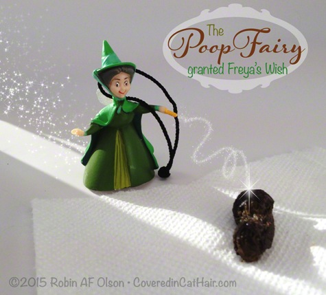 The Poop Fairy R Olson copyright
