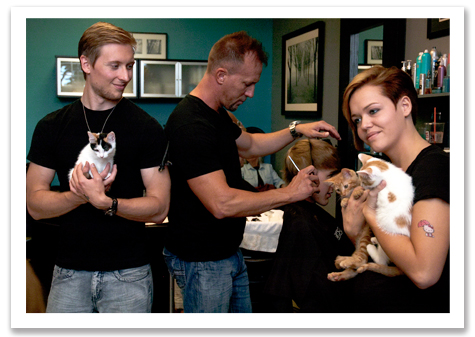 The Team with Kittens R Olson.jpg
