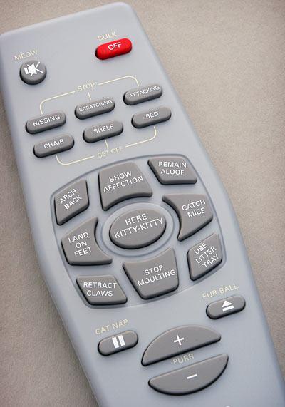 b640_control_a_cat_remote_control_closeup.jpg