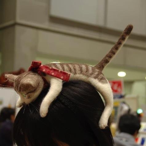 Catheadband2