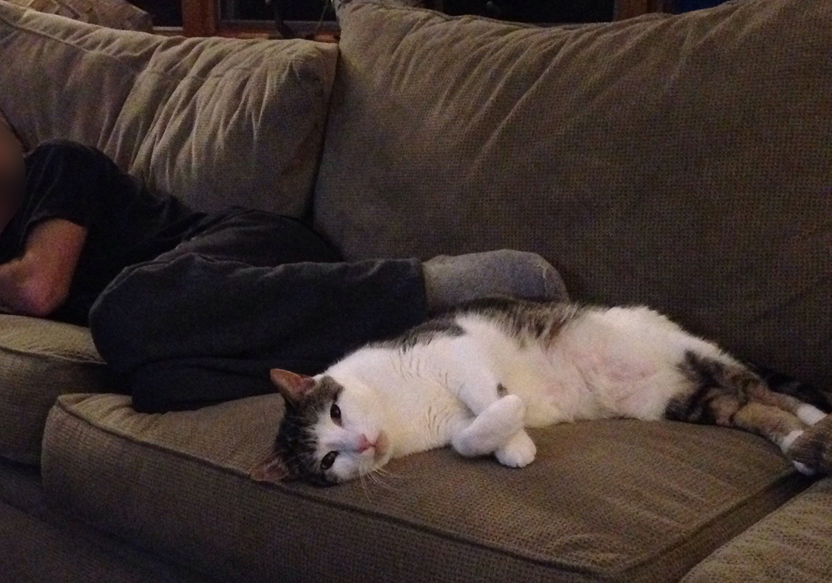 napping w dad.jpg