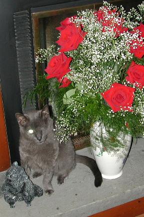 sasha_roses.jpg