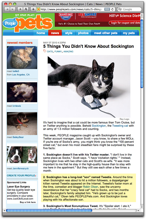 socks people pets copy.jpg